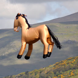 4m horse above the lake district