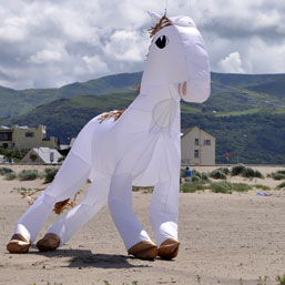 4m white horse at Barmouth
